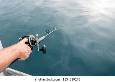Anticipation of catching a fish: man's hand holding fishing rod pole with line in sea water in Far North District, Northland, New Zealand, NZ