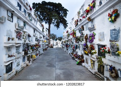 Antigua, Guatemala - March 20, 2018: Walls of tombs with flowers and tree at the end at the San Lazaro Cemetery