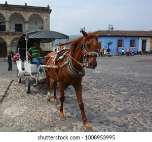 ANTIGUA GUATEMALA MAY 02 2016: The transportations found in La Antigua Guatemala. Horses and carriages are another way to move around the city.