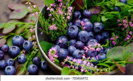 Antioxidant organic super-food in a metal bowl. Blueberry and forest flowers view. Blueberries on the woody table setting