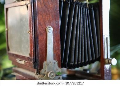 antique bellows camera