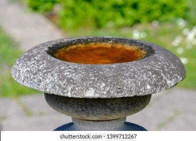 antique birdbath filled with water