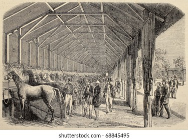 Antique illustration of agricultural contest: horses exposition. Original, from drawing of Blanchard and Lambert, was published on L'Illustration, Journal Universel, Paris, 1860
