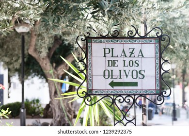 Antique olive square, Marbella, Andalusia, Spain