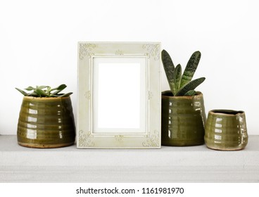 Antique photo frame on white background with green natural plants