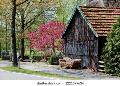 antique sofa stands in front of an old wooden barn next to a beautiful pink blooming apple tree (malus floribunda) on a sunny spring day