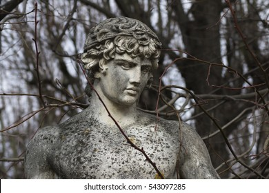 Antique statue surrounded by a leafless branches