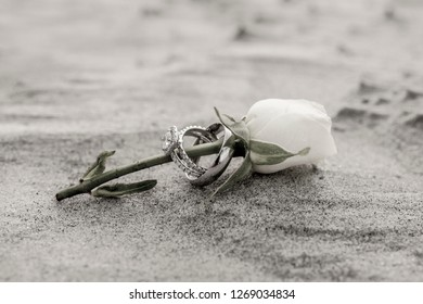 Antique subdued color photo of wedding rings on rose on the beach.