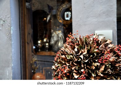 antique,antique shop,antique store,architecture,art,art shop,art store,autumn,beautiful,brown,building,city,culture,design,dried floral,europe,facade,floral,florence,flower,history,hop,horse,horse scu