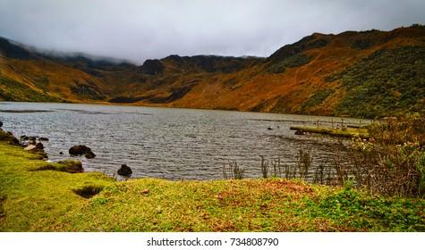 Antisana Ecological Reserve/Limpio Pungo/Ecuador