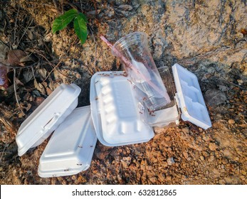 The ants on Styrofoam waste  and Plastic glass on the ground