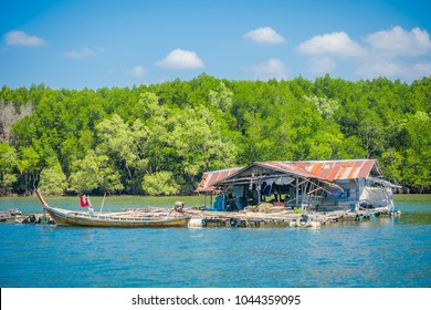 AO NANG, THAILAND - FEBRUARY 19, 2018: Outdoor view of very old and damaged house floating in the river close to the mangroves in Krabi Province, South of Thailand