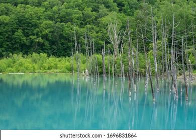 Aoi Ike (Blue Pond) in Hokkaido, Japan - Shutterstock ID 1696831864