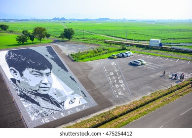 Aomori, Japan - Aug 7, 2016 - Pebbles art is formed to be a face of well known person in Japan displaying on the ground near the tanbo art at Inakadate