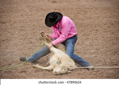 APACHE JUNCTION, AZ - FEBRUARY 26: A cowboy participates in the calf roping competition at the Lost Dutchman Days Rodeo on February 26, 2010 in Apache Junction, Arizona.