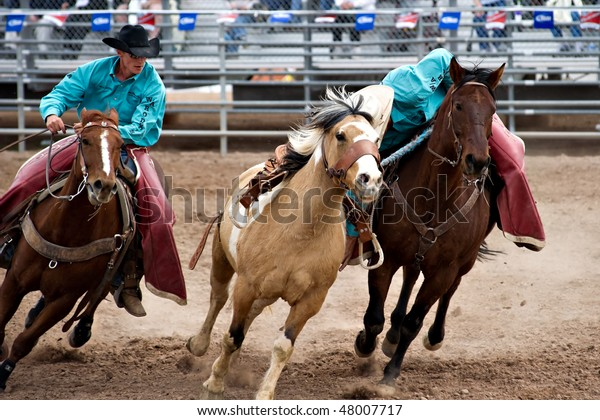 APACHE JUNCTION, AZ - FEBRUARY 27: Rodeo pick-up men corral a bucking horse in the saddle bronc competition at the Lost Dutchman Days Rodeo on February 27, 2010 in Apache Junction, Arizona.