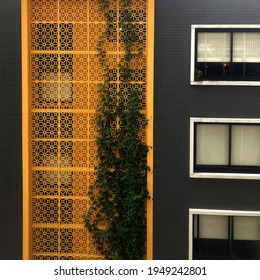 An apartment block with a bright yellow decorative privacy screen with foliage growing up the screen. Also pictured is a grey brick wall and windows - Shutterstock ID 1949242801