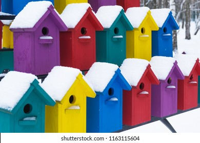 Apartment building for birds. Beautiful multi-colored birdhouses. Winter.