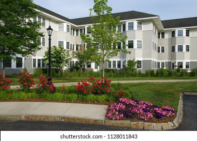 apartment buildings exterior with spring tree and flower