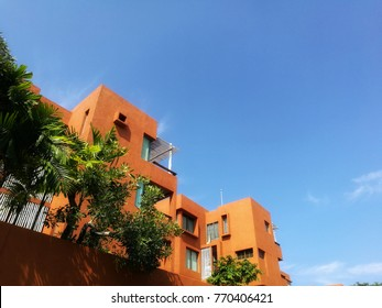 apartment and Green Tree Plant Leafs and blues sky background in out door park, nature fresh relaxation background.