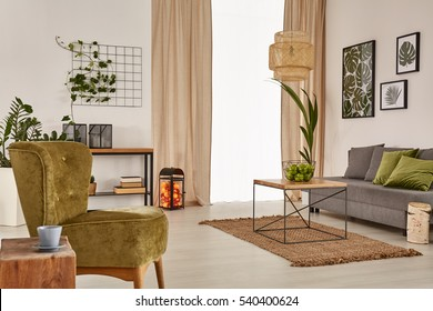 Apartment with grey sofa, green armchair and wood table