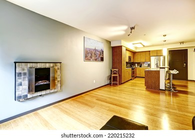 Apartment interior. Living room and kitchen area. Wall with electric fireplace