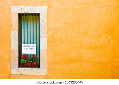 Apartments for rent. Window with announcement and yellow wall