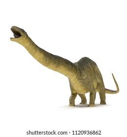 Apatosaurus Dinosaur on white. 3D illustration