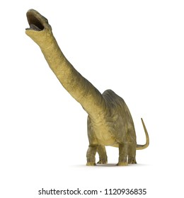 Apatosaurus Dinosaur on white. Front view. 3D illustration