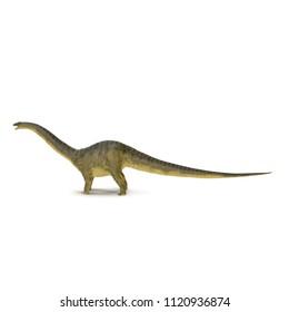 Apatosaurus Dinosaur on white. Side view. 3D illustration