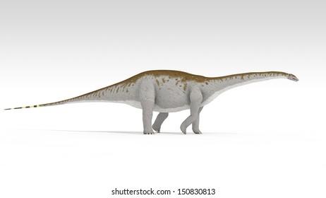 apatosaurus isolated