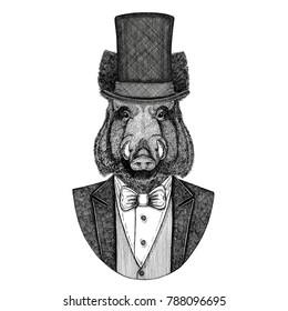 Aper, boar, hog, wild boar. Animal wearing jacket with bow-tie and silk hat, beaver hat, cylinder top hat. Elegant vintage animal. Image for tattoo, t-shirt, emblem, badge, logo, patch