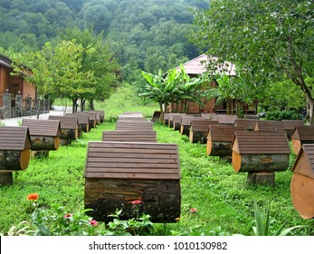 Apiary in Abkhazia. Hives of bees in apiary, Apiculture. Close-up view of wooden bee-hive units of apiary standing on grass in garden. Apiary with unusual hives in mountains of Abkhazia in Caucasus.