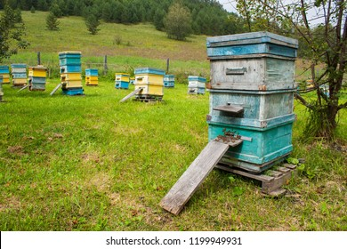 Apiary in the Altai mountains. Group of colorful beehives full of bees in the in the meadow.