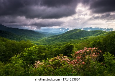 Appalachian Mountains spring scenic landscape photography with blooming mountain laurel flowers and dappled sunlight on the ridges near Waynesville, North Carolina, along the Blue Ridge Parkway.