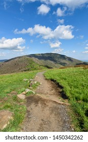 Appalachian Trail Along Roan Highlands
