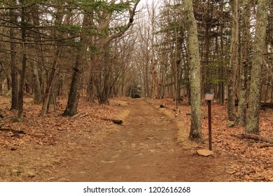Appalachian Trail in Shenandoah National Park in the state of Virginia
