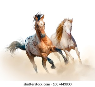 Appaloosa and welsh stallion run in dust over a white background