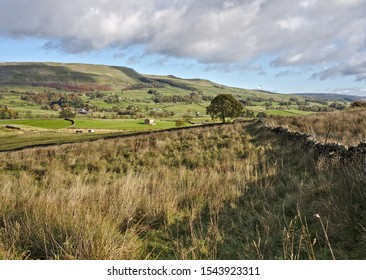 Appersett, Wensleydale, Yorkshire Dales National Park, North Yorkshire, England, Britain, October 2019, dry stone walls and barns in typical Yorkshire Dales landscape