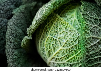 Appetizing green cabbage on a market stall