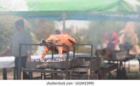 Appetizing grilled lamb on the spit skewer, roasted charcoal barbecue. Roasting prepared ram duck baked meat
