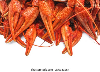 appetizing red boiled crawfish on a white background