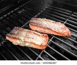 Appetizing salmon fillet on the grill, soft focus