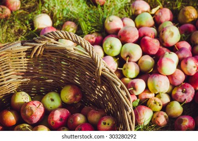 Apple basket with blur effect