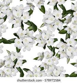 Apple blossom branch of flowers cherry. Traditional ornate spring flowers sakura pattern seamless. White flower buds on a tree. Sacura collage artistic illustration.