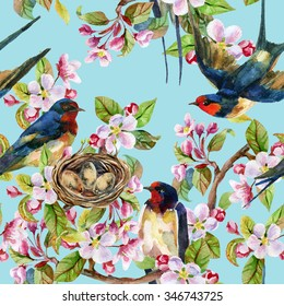 Apple blossom and swallows. Watercolor bird on spring branch with nest and blooming flowers. Hand painted illustration
