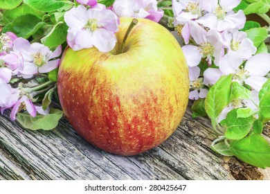 Apple with apple blossoms on rustic wood