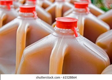 apple cider in gallon jug