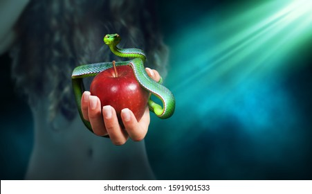 Apple fruit in a hand of a woman with a snake on top of it. Forbidden fruit concept.