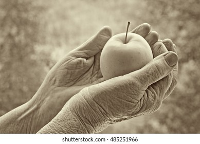 Apple in a hands of the old woman